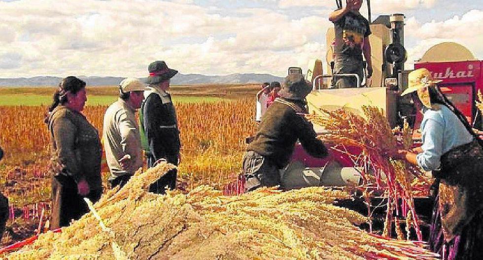 Exportación de alimentos crece más de 100% en la región Puno
