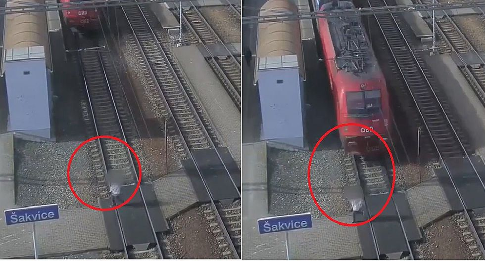 Tren embiste a una mujer que estaba distraída viendo su celular pero sobrevive  (VIDEO)